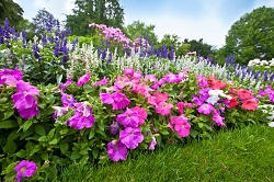 Best Landscaping Companies in Elephant and Castle, SE1